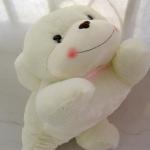 ตุ๊กตาหมาน้อย ตุ๊กตาตัวเล็ก หน้าตาขี้อ้อน ไว้เป็นของขวัญง้อแฟน ขนาด 30 CM
