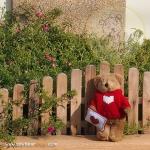 Teddy Bear (Be my Valentine.) ขนาด 21 ซม.