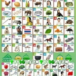 แผ่นเรียนรู้อักษรภาษาไทยและภาษาอักกฤษ