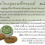 เซรั่มบอระเพ็ด ไทโนสปอร่า เซรั่ม Tinospora Serum thumbnail 11