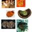 Mushroom Drink thumbnail 2