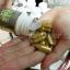 size maxx gold thumbnail 2