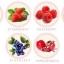 L-Gluta Berry Plus thumbnail 3