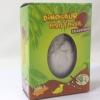 ชุดขดฟอสซิลไข่ไดโนเสาร์(No.404370BJ)