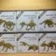 เลโก้นาโนโครงกระดูกไดโนเสาร์ thumbnail 1