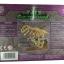 [Promotion Set] ชุดโครงกระดูกไดโนเสาร์พร้อมไข่ไดโนเสาร์แช่น้ำ2 คู่ thumbnail 6