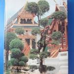 สารานุกรมไม้ประดับในประเทศไทย เล่มที่ 3 ปกแข็ง